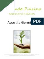 57877881-Apostila-Fernando-Pulcino-Gastronomia-Germinacao-de-Graos.pdf