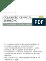 1. 1 Conducto Cervical Estrecho (Daniela)