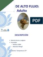 GAFAS DE ALTO FLUJO EN ADULTO.pdf