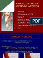 10-tobillo-pie-100406220746-phpapp02.ppt
