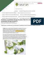 Beneficios y Propiedades Del Agua de Pepino