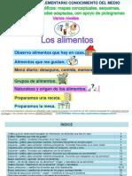Mapas Esquemas Proyecto LOS ALIMENTOS