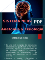 Fisiologia-SNC