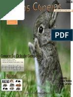 Revista de Los Conejos