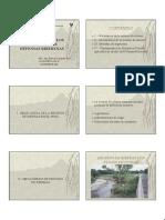 1 iNTRODUCCION A PROYECTOS DE DEFENSAS RIBERENAS.pdf