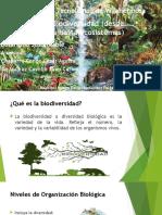 2.4 Biodiversidad (Desde Genes Hasta Ecosistemas Bueno)