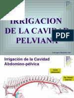 Irrigacion Cav. Pelviana