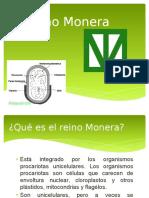 trabajodelreinomonera-090501230707-phpapp01
