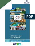Etudes de Cas Guadalupe 21AGO2015