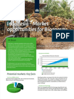 Anonim-2012-Indonesia Market Opportunities for Bioenergy