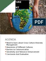Cross Culture Diversity