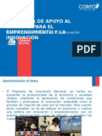 Presentacion Instrumento Pae