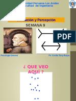 Sensacion y Percepcion Ing 2014-i