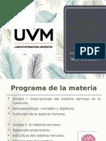 Programa BNC.pptx