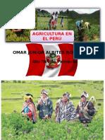 AGRICULTURA EN EL PERU.pptx