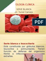 serie_blanca.pptx