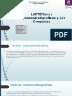 Exposicion tectonoestratigraficos
