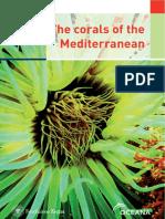 Corals Mediterranean Eng