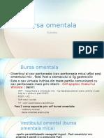 Bursa Omentala, VASC INERV