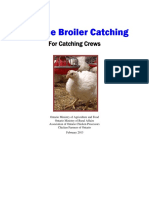 Humane Broiler Catching Course English