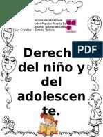 Trabajo de Derecho Del Niño....