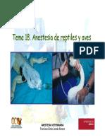 Anestesia de Reptiles y Aves