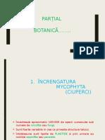 Partial Botanica 3 (1)