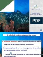 Problemas e Soluções Da Pesca
