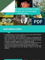 Efectos del cambio climático sobre la morfología en los animales vertebrados.