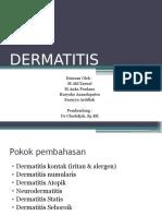 Dermatitis 2