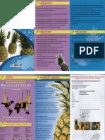 Peneraju Industri Nanas Negara BM.pdf