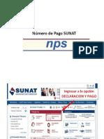 Generar un NPS - pago de impuestos