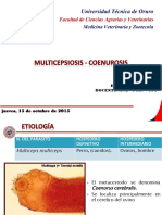 MULTICEPSIOSIS - COENUROSIS