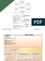 Historia Natural Hepatitis A