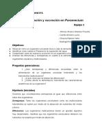 """Práctica # 4 """"Nutrición y excreción en Paramecium"""""""