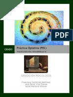 Guía_específica_de_la_práctica_optativa_-2015-16
