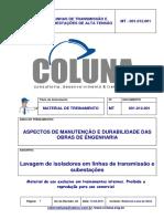 LAVAGEM DE ISOLADORES EM LINHAS DE TRAN….pdf