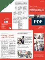 esp_desarrollo_gerencia.pdf