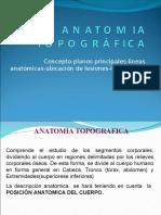 Anatomia Topografica Resumen