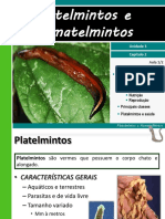 iii-2platelmintosenematelmintos-110814211824-phpapp02.pdf