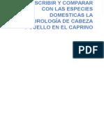 NEUROLOGIA CAPRINO