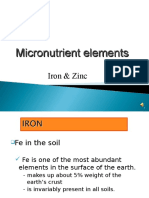 Iron and Zinc Micronutrients