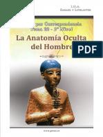 La Anatomia Oculta Del Hombre
