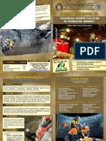 Diptico PDF Final Hsi