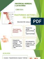 PDF Trastornos Motores Del Esofago