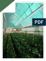 Sistema de Riego Inteligente Para Invernaderos Parte 2 (3)
