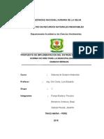 PROPUESTA DE IMPLEMENTACION DEL SISTEMA DE GESTION ISO 9000 PARA LA MUNICIPALIDAD DEL DISTRITO DE MARIANO DAMASO BERAUN.docx