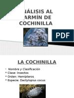 Análisis Al Carmín de Cochinilla