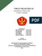 Laporan Kelompok Vi, Riyan Setiawan Uki, Olis Sumalong, Indrawati Pamoras, Zelin Yulistia, Een Huzainah, Yeni Susilawati.