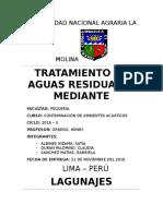 Tratamiento de Agua Por Lagunaje (2)
